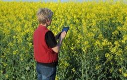 Female farmer examine blossoming rapeseed field Stock Photos