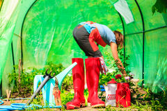 Female farmer and gardening tools in garden Stock Photo