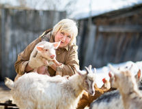 Female farmer holding a small pig Stock Photos