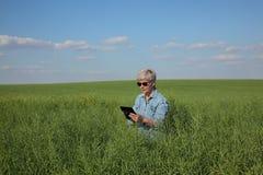 Female farmer inspecting rapeseed crop in field Stock Image