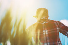 Female farmer looking at the sun on the horizon. Over cultivated wheat crops field, selective focus Royalty Free Stock Images
