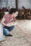 Female farmer picking fresh eggs in coop Royalty Free Stock Photo