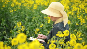 Female Farmer using Digital Tablet Computer in Oilseed Rapeseed Cultivated Agricultural Field Controlling The Growth of Plants stock video