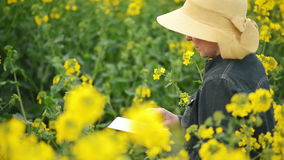 Female Farmer using Digital Tablet Computer in Oilseed Rapeseed Cultivated Agricultural Field Controlling Plants Growth stock footage
