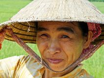 Female farmer in Vietnam. Portrait of a senior female farmer wearing a traditional hat with a rice field in the background, Mekong Delta, Vietnam Stock Photos