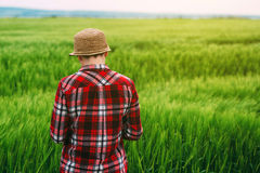 Female farmer in wheat field from behind. Adult caucasian woman looking at cereal crop cultivated plantation Royalty Free Stock Image