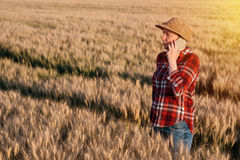 Female farmer in wheat field talking on mobile phone. Female farmer in cultivated wheat field talking on mobile phone. Woman with straw hat and plaid shirt as Royalty Free Stock Images
