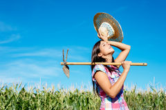 Female farmer working in corn field Stock Images