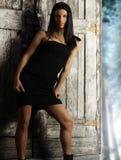Female fashion model Royalty Free Stock Photo
