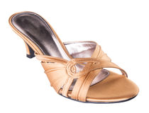Female fashion sandal on Background Royalty Free Stock Images