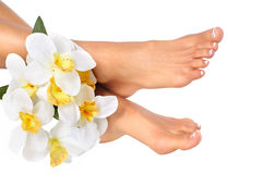 Female feet Royalty Free Stock Photography