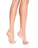 Female feet. Isolated over white background royalty free stock photo