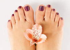 Female feet with beautiful pedicure after spa procedure Royalty Free Stock Photography