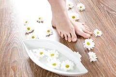 Female feet on the dark floorboard. Spa treatment with fresh white daisies / Female feet on the dark floorboard Royalty Free Stock Image