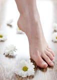 Female feet on the dark floorboard. View of nice smooth female foot on the dark floorboard Stock Photos