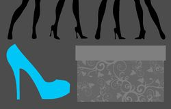 Female feet in different shoes. Royalty Free Stock Images