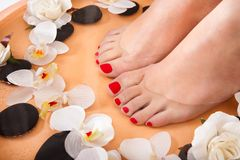 Female feet getting aroma therapy Stock Images
