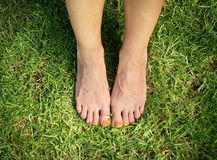 Female feet on green grass Stock Image