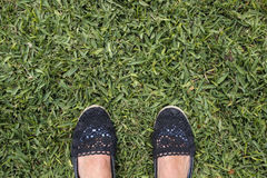 Female feet on green grass. Suntanned female feet on green grass Royalty Free Stock Photos