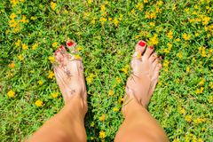 Female feet on the green grass with yellow flowers. Beautiful woman legs on flowering field in summer stock photos