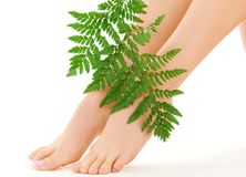 Female feet with green leaf Royalty Free Stock Photos