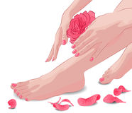 Female feet and hands with pink rose and petals Royalty Free Stock Images