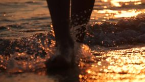 Female feet of hiker tourist walking barefoot on shore. Legs of young woman going along ocean beach. Girl stepping on. Wet sand of shoreline. Slow motion. Close stock footage