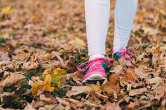 Female feet in jeans and pink sneakers walking on fallen autumn. Leaves Stock Photography