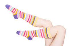Female feet in knitted socks Stock Image
