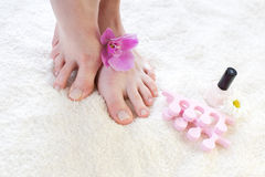 Female feet with pink orchid. Stock Image