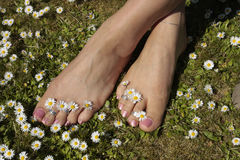 Female feet relaxing on grass lawn Royalty Free Stock Image