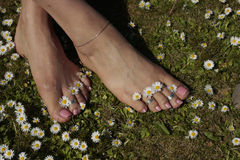 Female feet relaxing royalty free stock images