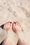Female feet in sand. Female pedicured feet in sand at beach royalty free stock photo
