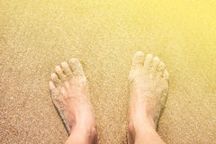 Female feet on the sand. Stock Image