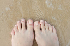 Female feet in the sand. Copy space. From top to bottom Stock Image