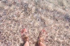 Female feet in the sea on a sandy beach Royalty Free Stock Photo