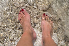 Female feet in sea water. Woman's beautiful legs on a sea water Stock Images