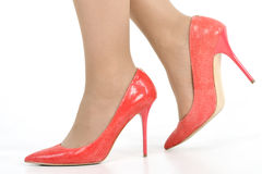 Female feet and shoes. Shoes heels elegance red woman Stock Photos