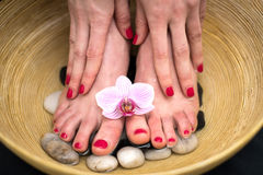 Female feet in spa bowl with sea salt, foot bath. Royalty Free Stock Image