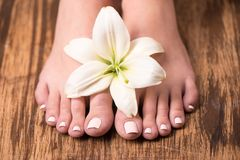 Female feet with spa pedicure Stock Image