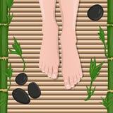 Female feet royalty free illustration