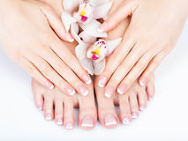 Female feet at spa salon on pedicure and manicure procedure Royalty Free Stock Image