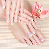 Female feet at spa salon on pedicure and manicure procedure Royalty Free Stock Photos