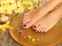 Female feet at spa salon on pedicure procedure Royalty Free Stock Image
