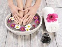Female feet at spa salon on pedicure procedure stock photography