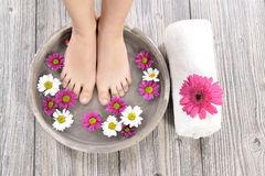 Female feet at spa salon on pedicure procedure Stock Images