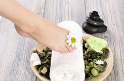 Female feet at spa salon on pedicure procedure Royalty Free Stock Photo