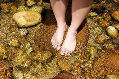 Female feet standing in water Stock Images