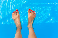 Female feet in swimming pool. Female feet splashing in the swimming pool Stock Photography