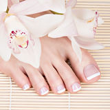 Female feet with white french pedicure on nails. at spa salon Royalty Free Stock Photography
